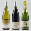 【ふるさと納税】高級ワイン3種セット 【ワイン・お酒・赤ワイン・白ワイン・シャルドネ・メルロー・スパ...