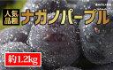 【ふるさと納税】☆先行予約≪人気の皮ごと≫ナガノパープル 約1.2kg(2~4房) 【果物・ぶどう・フルーツ】 お届け:2019年9月1日~10月15日