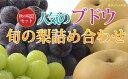 【ふるさと納税】☆先行予約【秋の味覚セット】人気のブドウ2種...
