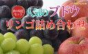 【ふるさと納税】☆先行予約【信州の味覚】人気のブドウ2種&旬...