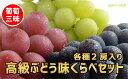 【ふるさと納税】☆先行予約 葡萄三昧 高...