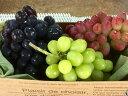 【ふるさと納税】皮ごと食べられるブドウ詰合せ約2kg 3〜4...