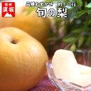 【ふるさと納税】【信州須坂の梨】旬の梨 約10kg 【果物・フルーツ】 お届け:2020年9月1日~10月31日