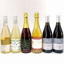 【ふるさと納税】アメリカ系ぶどうワイン6種セット《楠わいなりー》【ワイン・お酒・洋酒・ぶどう・葡萄・...