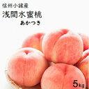 【ふるさと納税】信州小諸産「浅間水蜜桃」みつおかのもも約5k