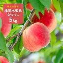 【ふるさと納税】信州小諸産「浅間水蜜桃」みつおかのもも約5k...