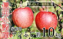 【ふるさと納税】信州小諸産ご家庭用サンふじりんご約10kg ...