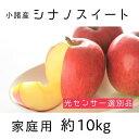 【ふるさと納税】信州小諸産 シナノスイート 家庭用 約10kg 【果物類・林檎・りんご・リンゴ・シナノスイート・家庭用・約10kg】 お届け:2021年10月中旬~11月上旬