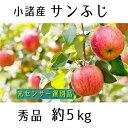 【ふるさと納税】信州小諸産 サンふじりんご 秀品 約5kg 【果物類・林檎・りんご・リンゴ・サンふじ・約5kg】 お届け:2021年11月下旬~12月上旬