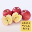 【ふるさと納税】サンふじ 約3kg(長野県認証 減農薬生産)...