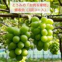 【ふるさと納税】とうみの「お肉」&「果物」頒布会(4回コース...