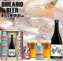 【ふるさと納税】オラホビール6本&麦焼酎セット