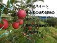 【ふるさと納税】季節のりんご(5kg)
