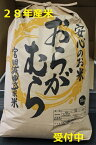 【ふるさと納税】(平成28年度新米)減農薬栽培コシヒカリ10kg