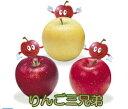 【ふるさと納税】季節のりんご『お任せコース』(5kg)(予約...