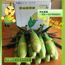 2020年受付開始8月~発送予定【ふるさと納税】フルーツトウモロコシ平谷ゴールド(4Kg)