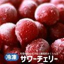 【ふるさと納税】調理用さくらんぼ サワーチェリー 約1.5k...