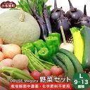 【ふるさと納税】新規就農者応援コース 小布施めぐる野菜セット...