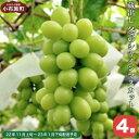 【ふるさと納税】蔵出し冬のシャインマスカット(4房)