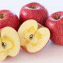 【ふるさと納税】サンふじ 秀品 約10kg(32玉入り) 【果物・フルーツ・林檎・リンゴ】 お届け:2019年12月上旬〜中旬