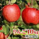 【ふるさと納税】【先行予約】 りんご 飯綱のりんご サンふじ...