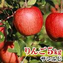 【ふるさと納税】【先行予約】 丸山りんご園 の りんご 【 ...