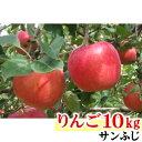 【ふるさと納税】【先行予約】 りんご 長野県 飯綱町 完熟蜜...