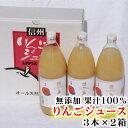 【ふるさと納税】 飯綱町産 サンふじ りんごジュース 果汁1...