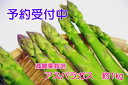 【ふるさと納税】【先行予約】 アスパラガス 1kg (2L〜...