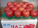 【ふるさと納税】【先行予約】飯綱町 エコファーマーの「ひと手間りんご」サンふじ10kg お届け:2019年12月中旬〜