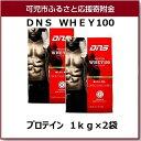 【ふるさと納税】DNS WHEY100 プロテイン 1kg×...