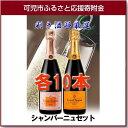 【ふるさと納税】岐阜のきき酒師が厳選したシャンパーニュ ヴー