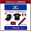 【ふるさと納税】ミズノ 東京6大学野球応援グッズ 4点セット...