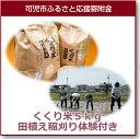 【ふるさと納税】くくり米5kg田植え稲刈り体験付き