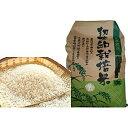 【ふるさと納税】岐阜県産ハツシモ 10kg 【お米】
