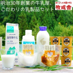 【<strong>ふるさと納税</strong>】<牧成舎>牛乳 ヨーグルト <strong>チーズ</strong> よりどり6種セット 飛騨産生乳で作ったこだわりの乳製品セット[B0096]