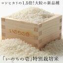 【ふるさと納税】《事前予約制》新米 飛騨産 特別栽培米 『いのちの壱』 5kg 令和2年産[B0126]