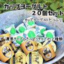 【ふるさと納税】飛騨の牛乳屋こだわり 食べるタイプのヨーグル...