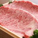 【ふるさと納税】飛騨市推奨特産品 飛騨牛 サーロインステーキ 250g×2枚 計500g 牛肉 和牛 肉 お歳暮[F0006]