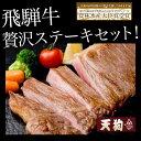 【ふるさと納税】飛騨牛ステーキセット飛騨牛ヒレステーキ1枚、...