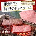 【ふるさと納税】飛騨牛焼肉セット飛騨牛もも250g、飛騨牛ば...