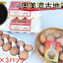 【ふるさと納税】神代の味の再現 奥美濃古地鶏の卵 【卵】