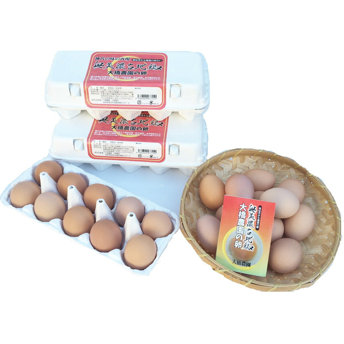 【ふるさと納税】奥美濃古地鶏 大橋農園の卵
