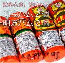 【ふるさと納税】0608 明宝ハム2個・明方ハム2個セット