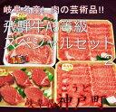 【ふるさと納税】飛騨牛A5等級スペシャルセット2