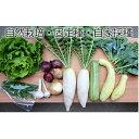 【ふるさと納税】自然栽培 季節のおまかせ野菜セット(固定種・自家採種 約8種類) 【野菜・セット・詰...