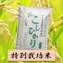【ふるさと納税】特別栽培米 コシヒカリ 精米10kg(分搗き可)または 玄米(11Kg) 30年産
