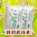 【ふるさと納税】特別栽培米 コシヒカリ 精米20kg(分搗き...