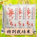 【ふるさと納税】特別栽培米 夢ごこち 精米30kg(分搗き可...
