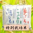 【ふるさと納税】特別栽培米 30kg コシヒカリ/ハツシモ/...